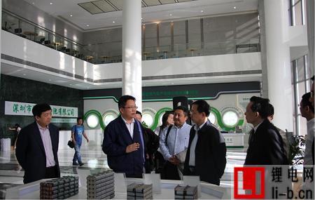 荆州市沃特玛电池有限公司