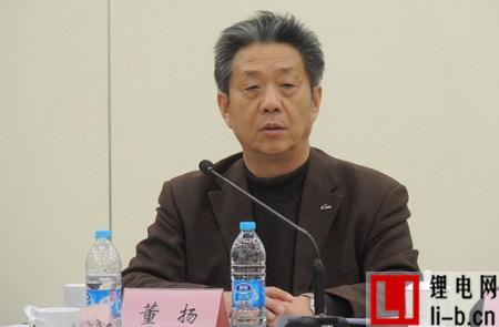 中汽协董扬:汽车企业需要重新审定电动汽车战略