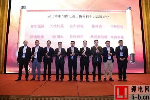 2016年度中国锂电池正极材料十大品牌