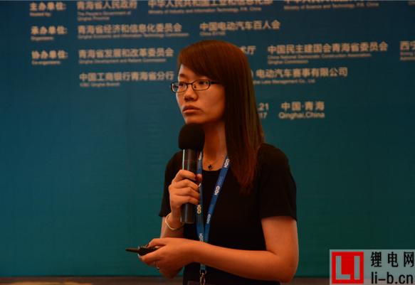 王芳:电池现有标准体系及安全性测试评价
