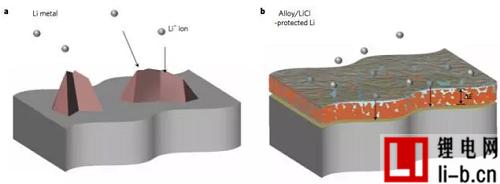 图2. 示意图描述了合金保护的锂箔的功能。