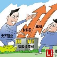 中国碳酸锂企业加快锂矿资源的勘探和整合