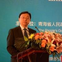 """比亚迪王传福:""""十三五""""中国锂电池会形成新业态"""