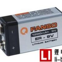 武汉孚安特ER9V锂电池