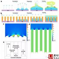 稳定的锂金属负极:通过纳米孔道限制锂离子均匀分布