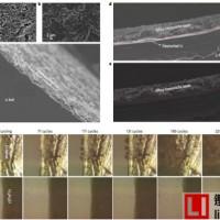 加拿大滑铁卢大学Linda F. Nazar 教授报道一种高效稳定金属锂负极的方法