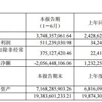 冠城大通半年报:上半年净利润同比增长1392.93%