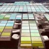 锂电需求旺盛或引发提锂技术新变革