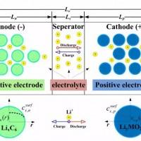 干货分享:锂电池极片中的锂浓度分布