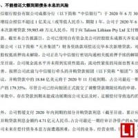 """天齐锂业债务违约""""黑天鹅"""",大股东11月份套现14亿元"""