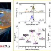 西安交大团队发现复合固态电解质办点事,抑制锂枝晶生长