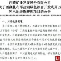 投资20亿 西藏矿业盐湖提锂产业发展将全面提速