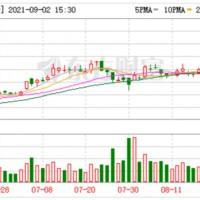 3个月股价涨超2倍 天华超净23亿元加码锂电材料